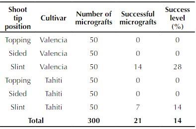 Table 3. Effect of three methods of micrografting on Valencia orange and Tahiti lime